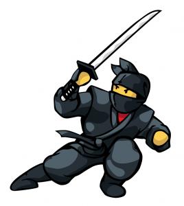 Ninja800